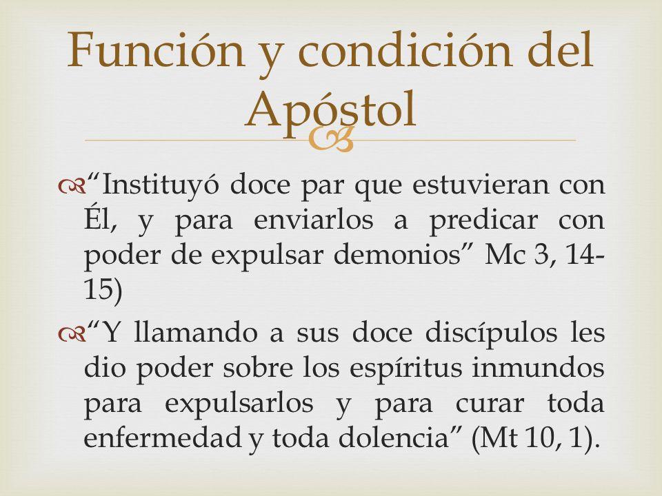 Función y condición del Apóstol