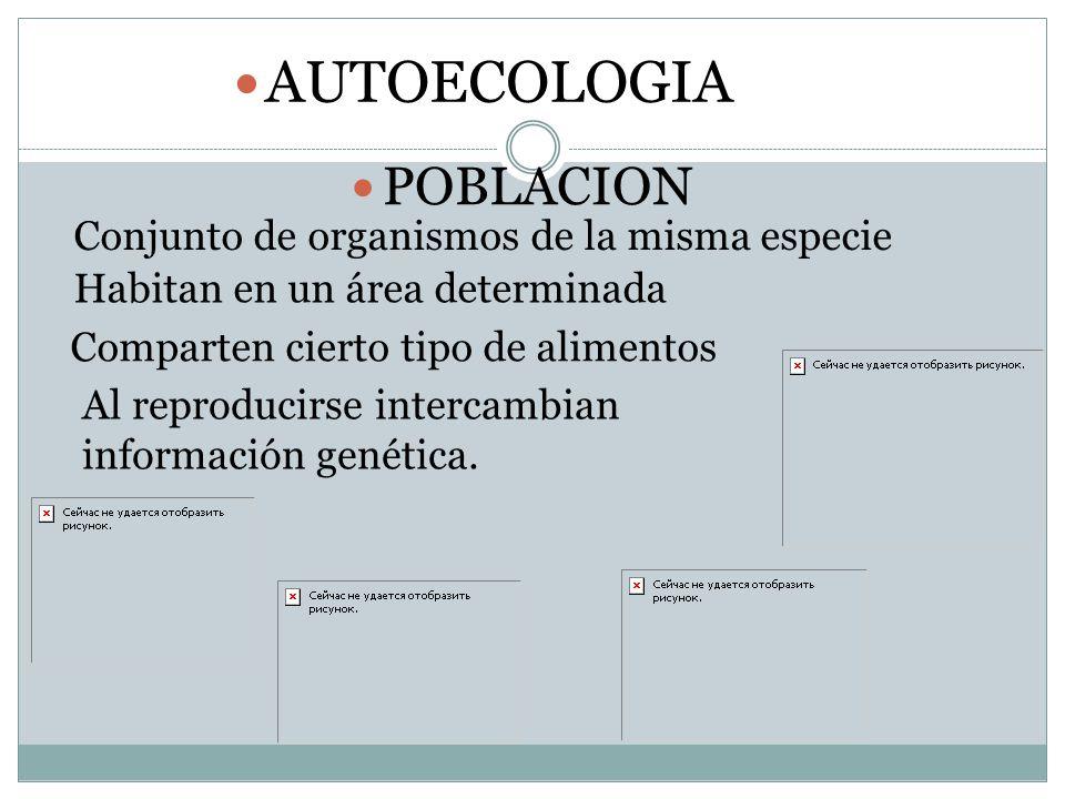 AUTOECOLOGIA POBLACION Conjunto de organismos de la misma especie