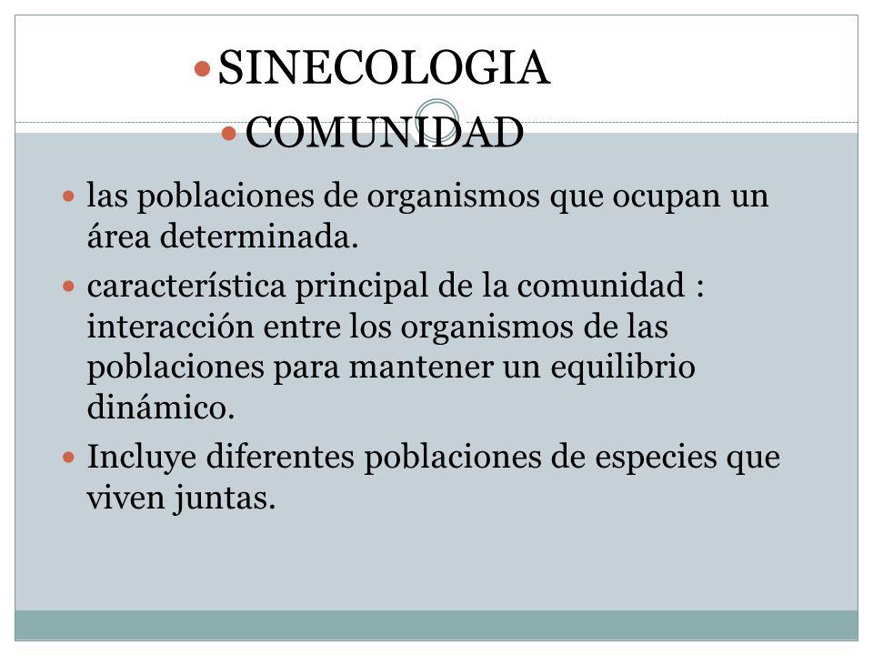 SINECOLOGIA COMUNIDAD