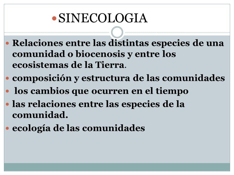 SINECOLOGIA Relaciones entre las distintas especies de una comunidad o biocenosis y entre los ecosistemas de la Tierra.