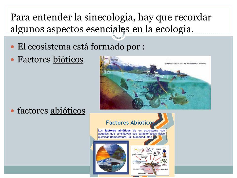 Para entender la sinecologia, hay que recordar algunos aspectos esenciales en la ecologia.