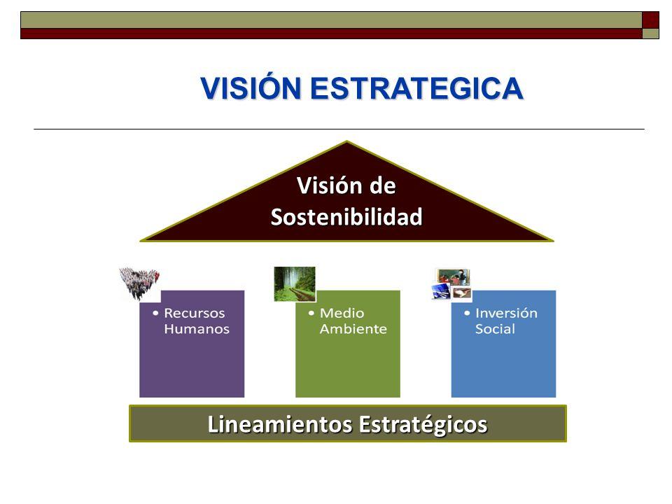 Visión de Sostenibilidad Lineamientos Estratégicos