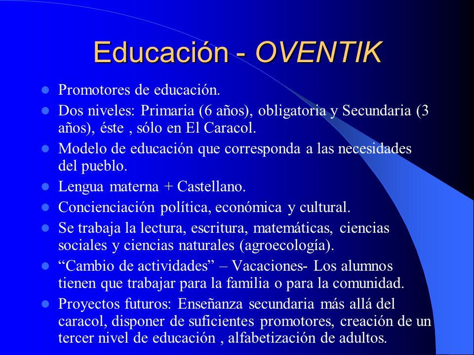 Educación - OVENTIK Promotores de educación.
