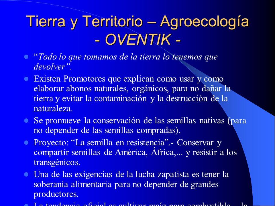 Tierra y Territorio – Agroecología - OVENTIK -