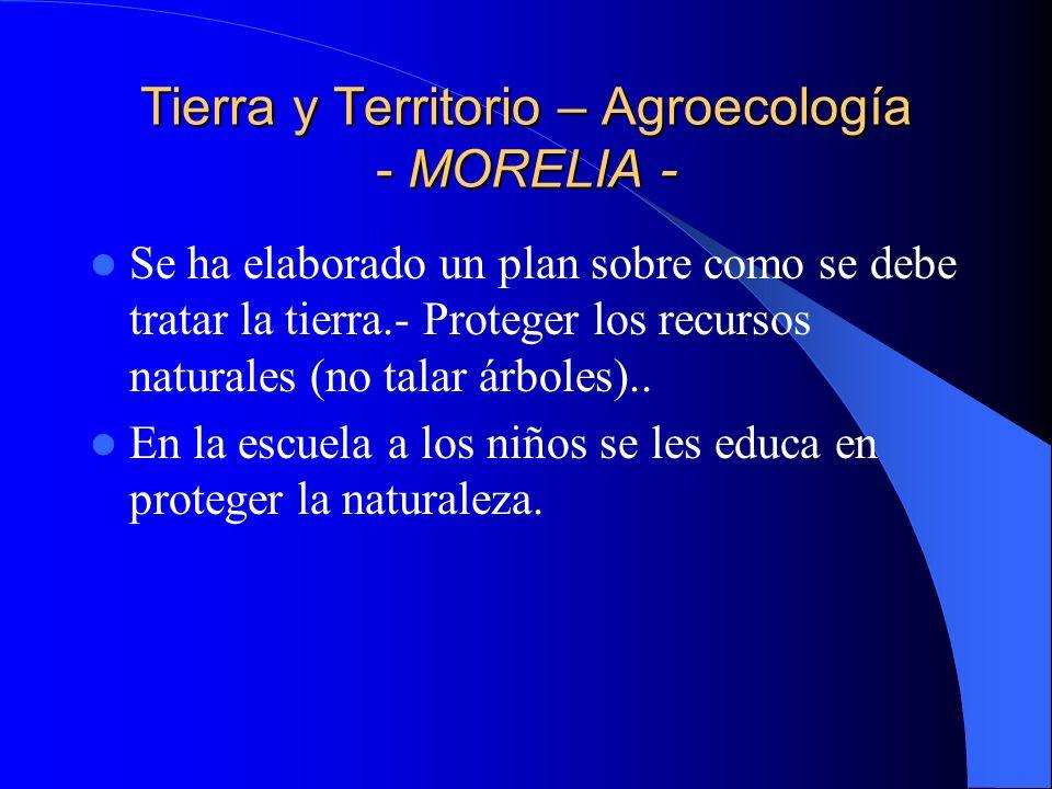 Tierra y Territorio – Agroecología - MORELIA -