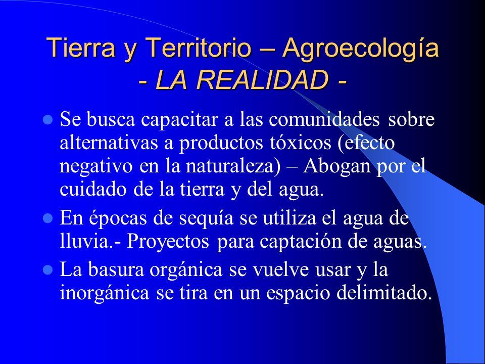 Tierra y Territorio – Agroecología - LA REALIDAD -
