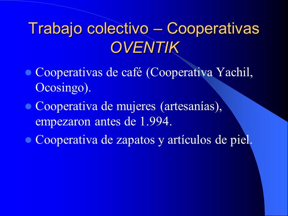 Trabajo colectivo – Cooperativas OVENTIK