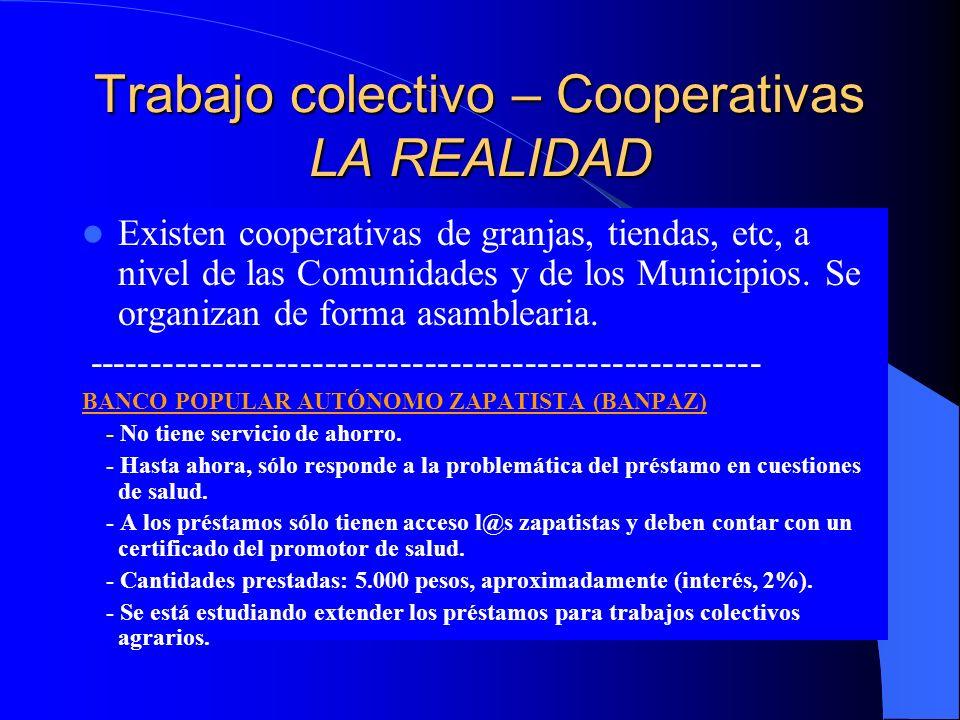 Trabajo colectivo – Cooperativas LA REALIDAD