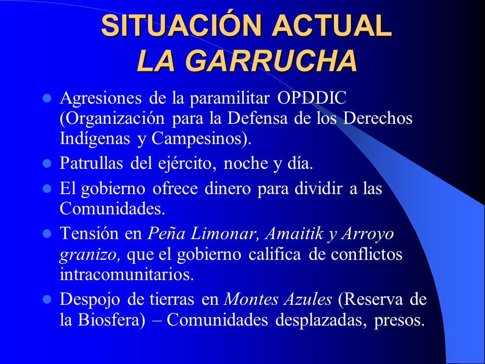 SITUACIÓN ACTUAL LA GARRUCHA
