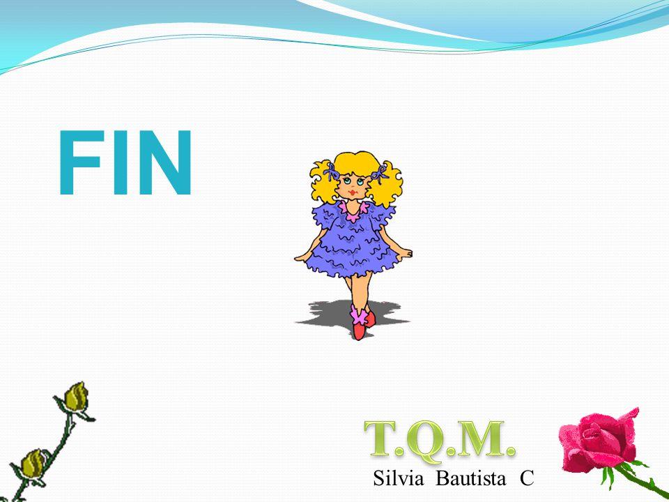FIN T.Q.M. Silvia Bautista C