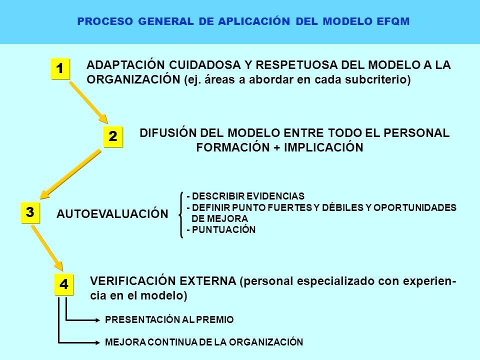 PROCESO GENERAL DE APLICACIÓN DEL MODELO EFQM