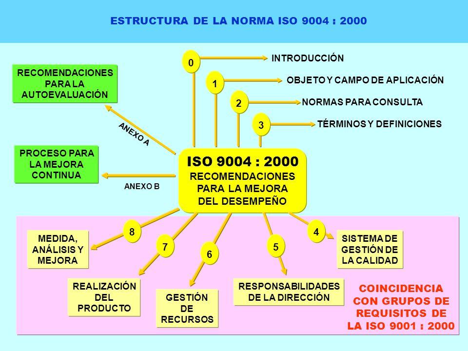 ESTRUCTURA DE LA NORMA ISO 9004 : 2000