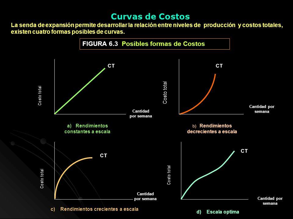 Curvas de Costos FIGURA 6.3 Posibles formas de Costos