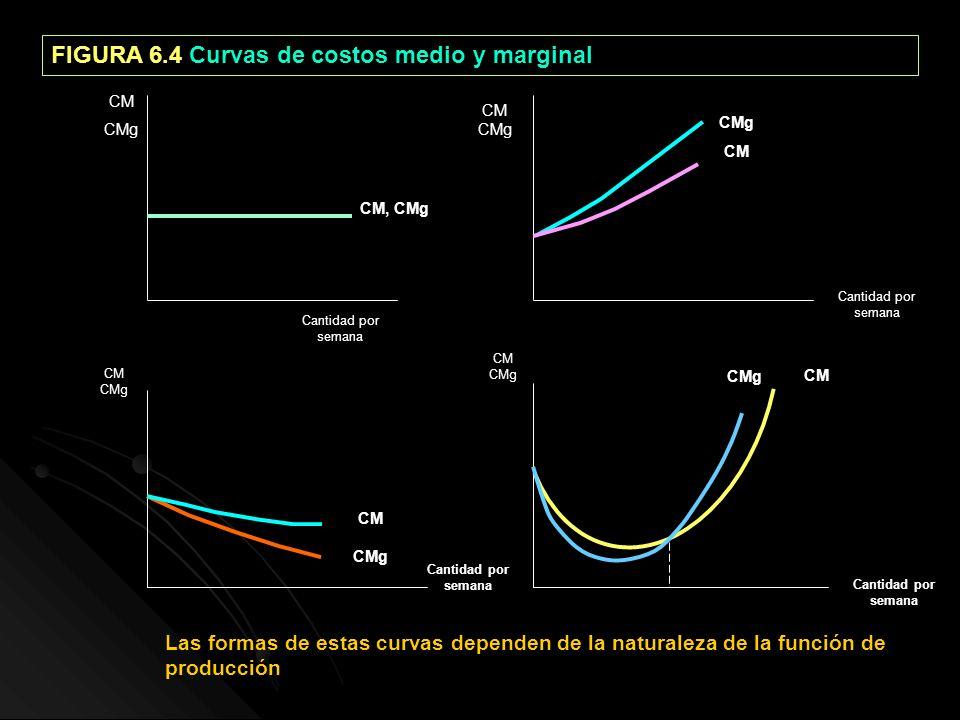 FIGURA 6.4 Curvas de costos medio y marginal