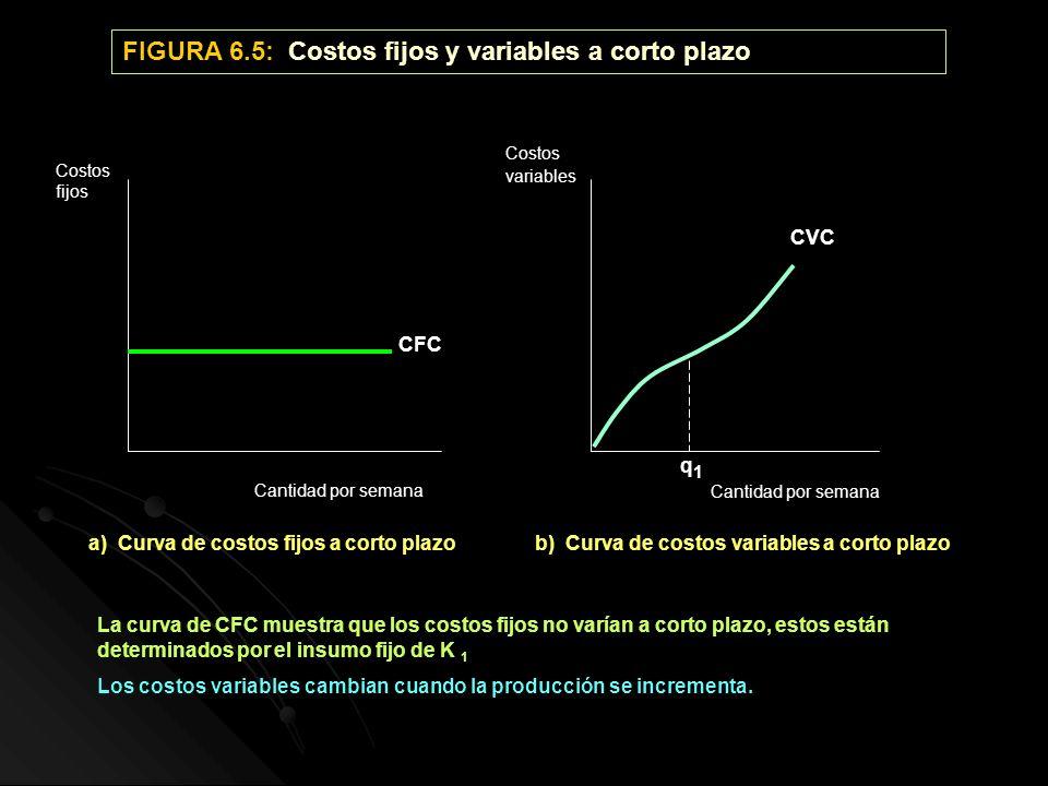 FIGURA 6.5: Costos fijos y variables a corto plazo