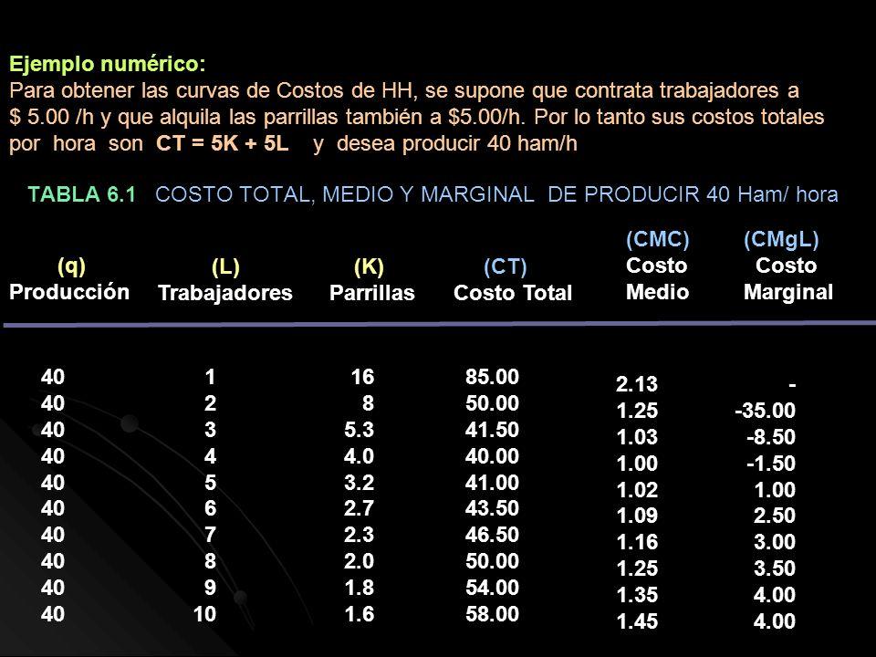 TABLA 6.1 COSTO TOTAL, MEDIO Y MARGINAL DE PRODUCIR 40 Ham/ hora