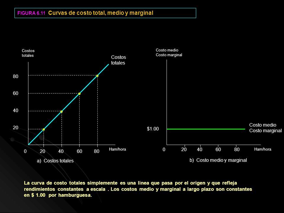 FIGURA 6.11 Curvas de costo total, medio y marginal