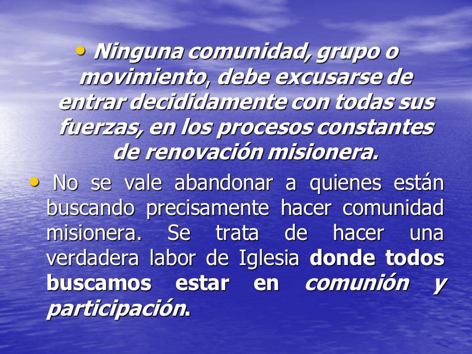 Ninguna comunidad, grupo o movimiento, debe excusarse de entrar decididamente con todas sus fuerzas, en los procesos constantes de renovación misionera.