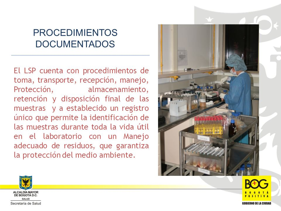 PROCEDIMIENTOS DOCUMENTADOS