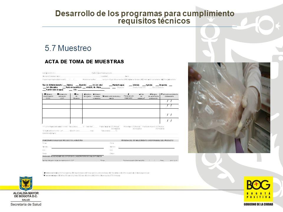 Desarrollo de los programas para cumplimiento requisitos técnicos