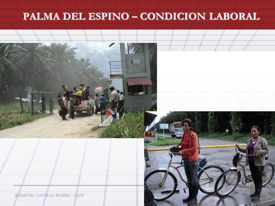 PALMA DEL ESPINO – CONDICION LABORAL