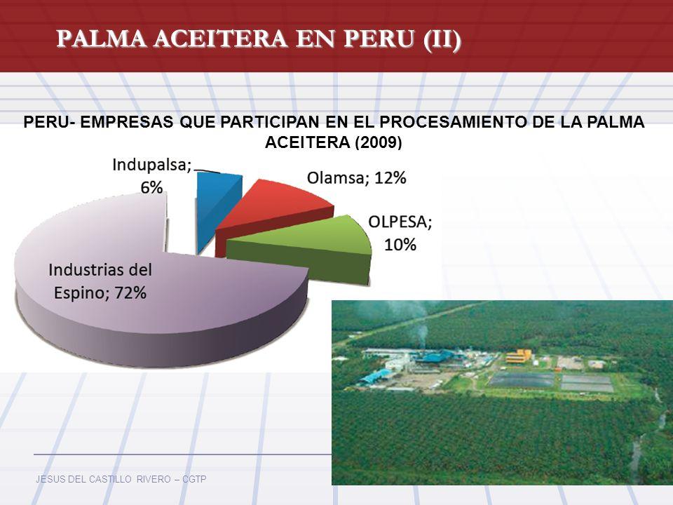 PALMA ACEITERA EN PERU (II)