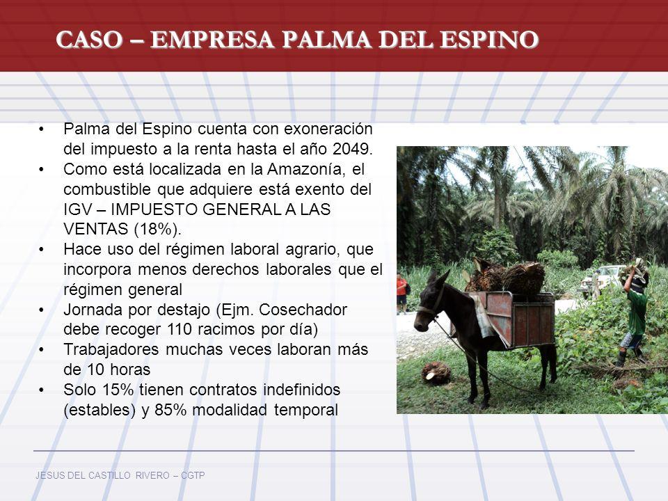 CASO – EMPRESA PALMA DEL ESPINO