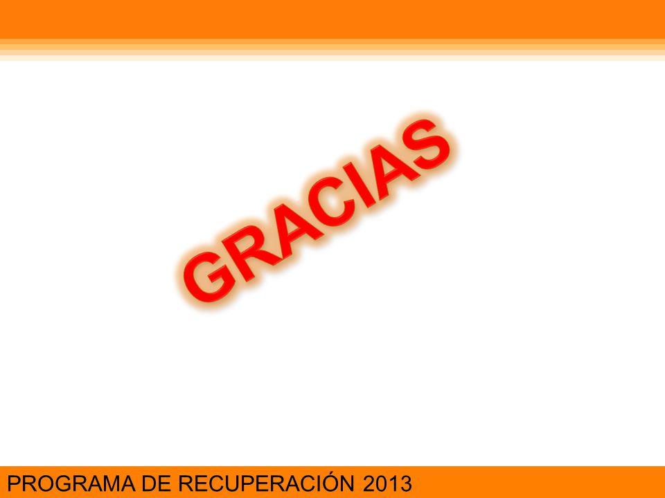 GRACIAS PROGRAMA DE RECUPERACIÓN 2013