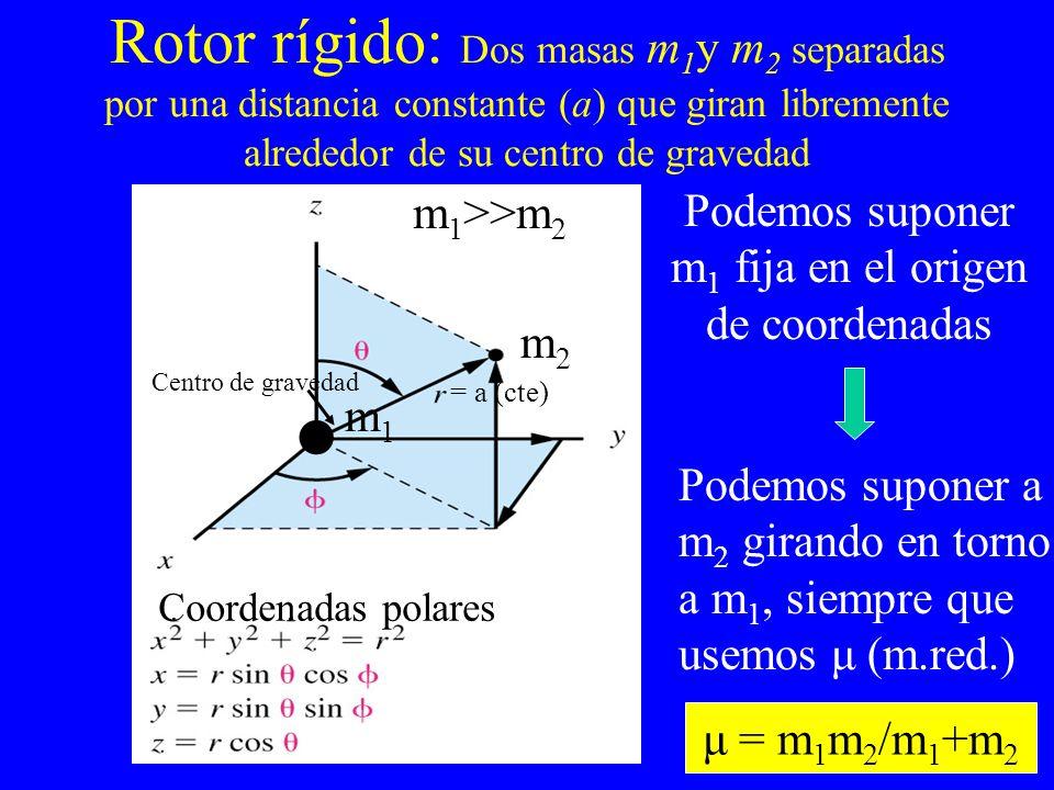 Rotor rígido: Dos masas m1y m2 separadas por una distancia constante (a) que giran libremente alrededor de su centro de gravedad