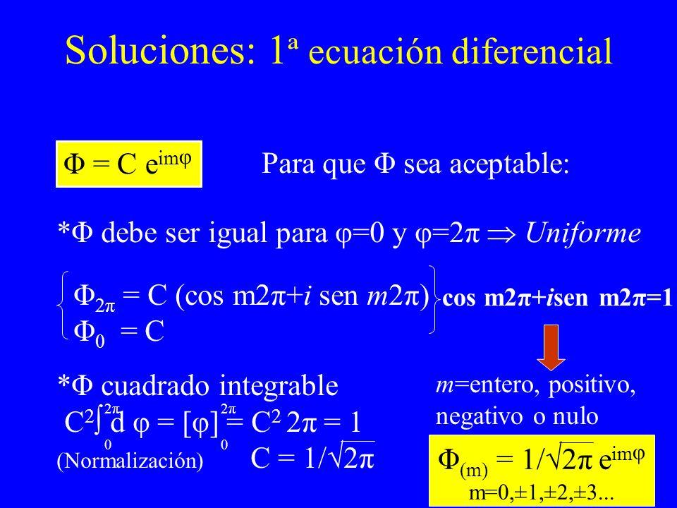 Soluciones: 1ª ecuación diferencial