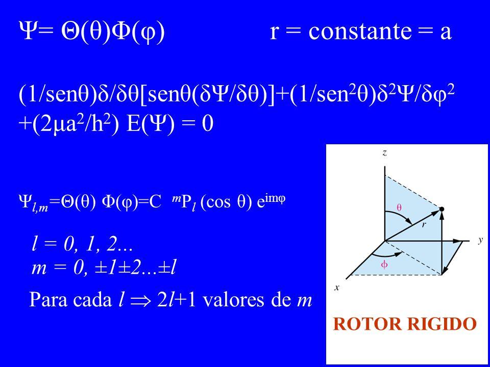 Ψ= Θ(θ)Φ(φ) r = constante = a