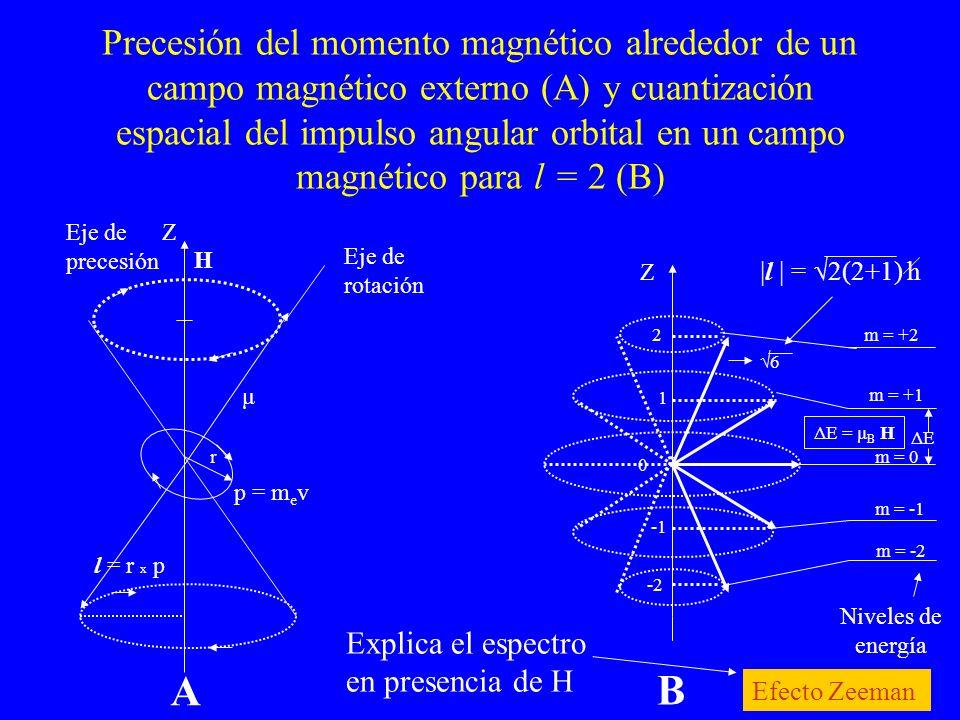 Precesión del momento magnético alrededor de un campo magnético externo (A) y cuantización espacial del impulso angular orbital en un campo magnético para l = 2 (B)
