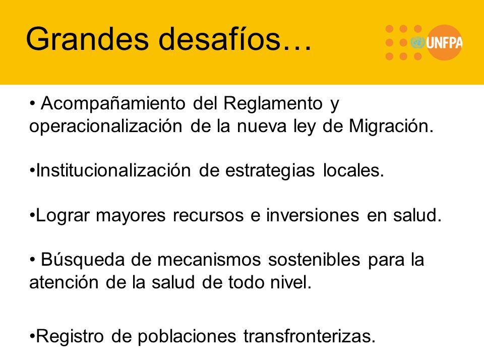 Grandes desafíos… Acompañamiento del Reglamento y operacionalización de la nueva ley de Migración. Institucionalización de estrategias locales.