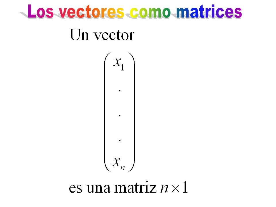 Los vectores como matrices