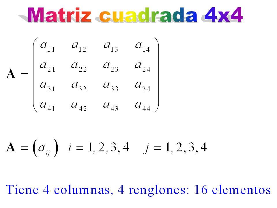 Matriz cuadrada 4x4
