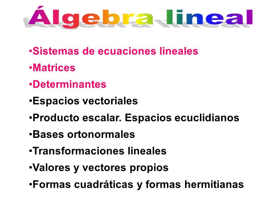 Álgebra lineal Sistemas de ecuaciones lineales Matrices Determinantes