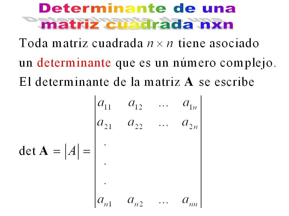 Determinante de una matriz cuadrada nxn