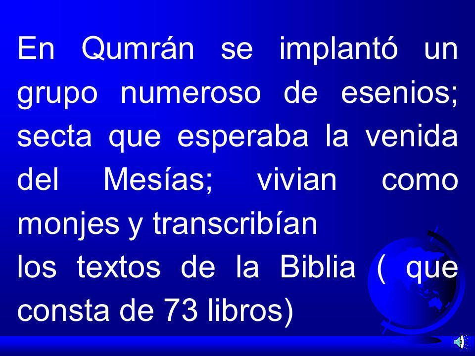 En Qumrán se implantó un grupo numeroso de esenios; secta que esperaba la venida del Mesías; vivian como monjes y transcribían