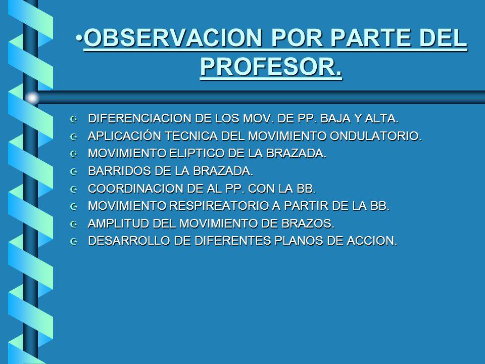 OBSERVACION POR PARTE DEL PROFESOR.