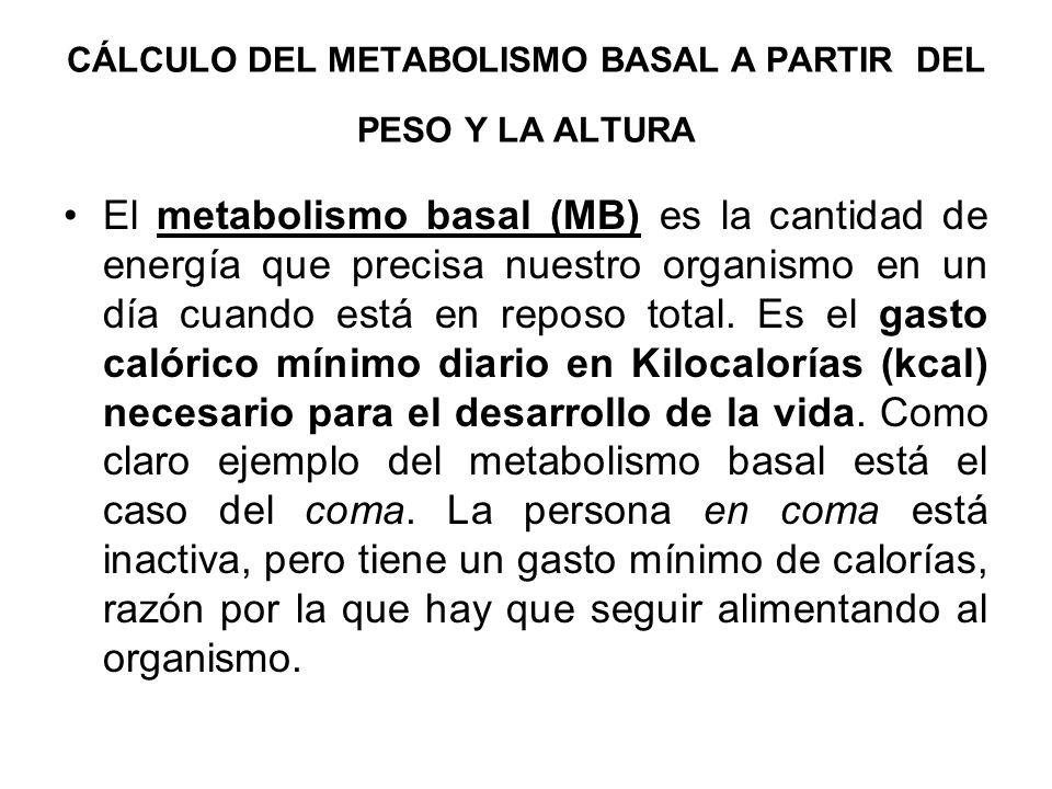 CÁLCULO DEL METABOLISMO BASAL A PARTIR DEL PESO Y LA ALTURA