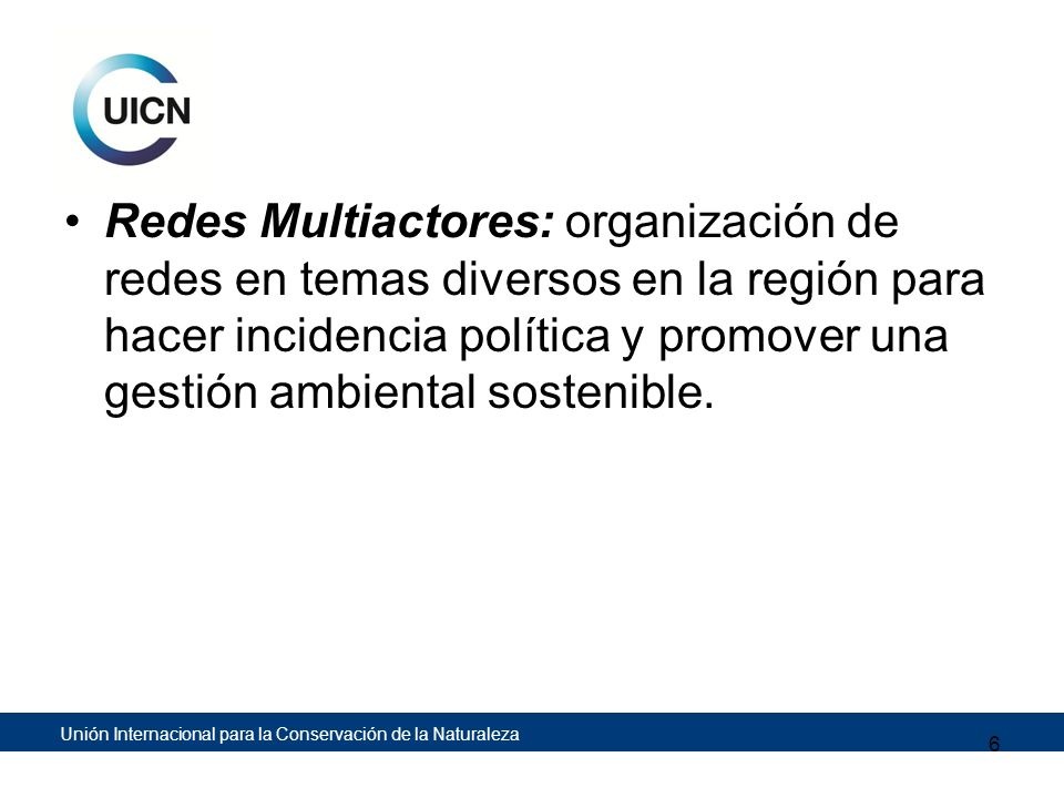 Redes Multiactores: organización de redes en temas diversos en la región para hacer incidencia política y promover una gestión ambiental sostenible.