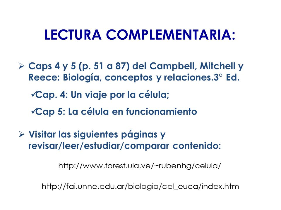 LECTURA COMPLEMENTARIA: