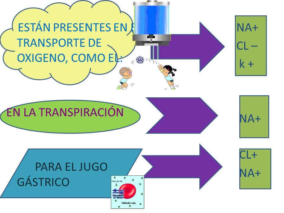 ESTÁN PRESENTES EN EL TRANSPORTE DE OXIGENO, COMO EL: EN LA TRANSPIRACIÓN PARA EL JUGO GÁSTRICO NA+ CL – k + CL+