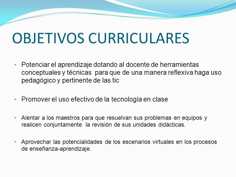 OBJETIVOS CURRICULARES