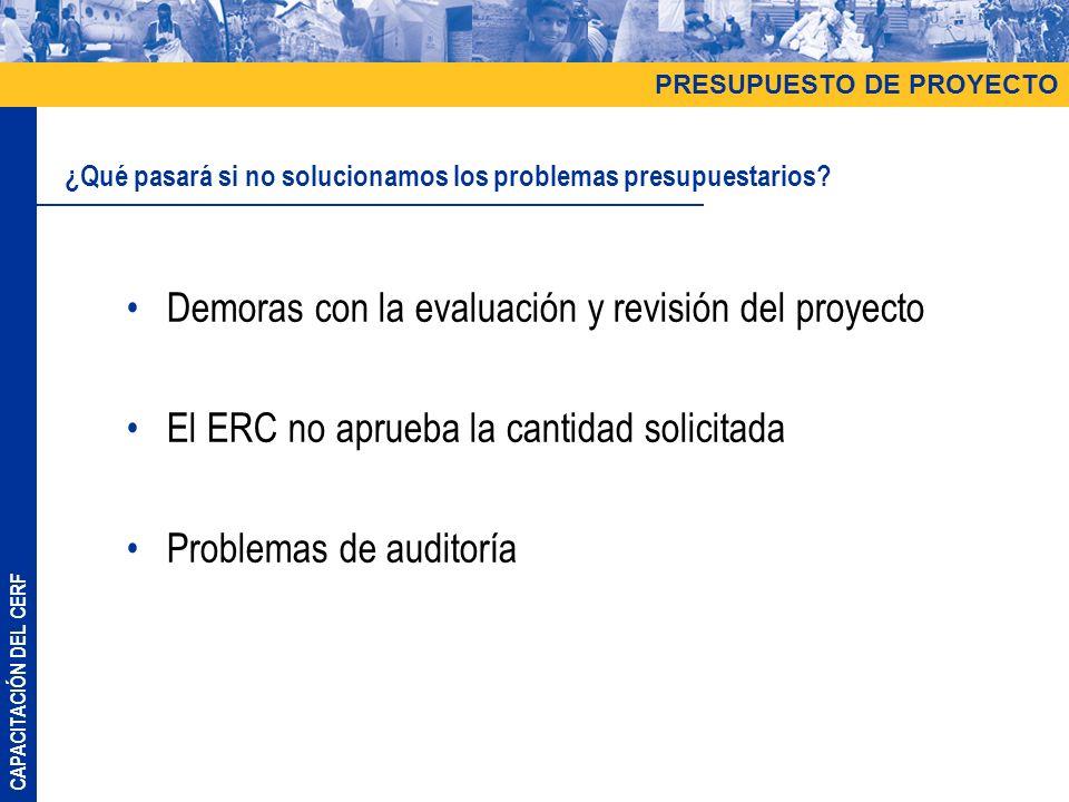 Demoras con la evaluación y revisión del proyecto