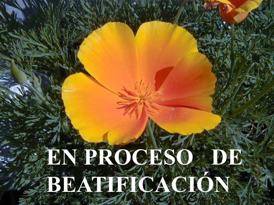 EN PROCESO DE BEATIFICACIÓN