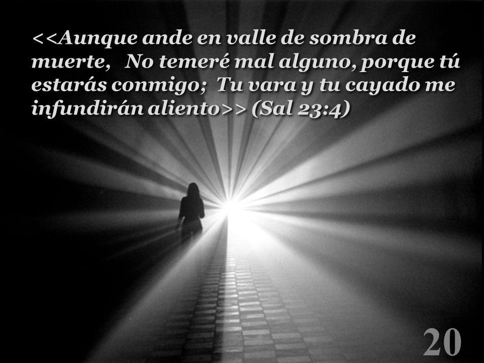 <<Aunque ande en valle de sombra de muerte, No temeré mal alguno, porque tú estarás conmigo; Tu vara y tu cayado me infundirán aliento>> (Sal 23:4)