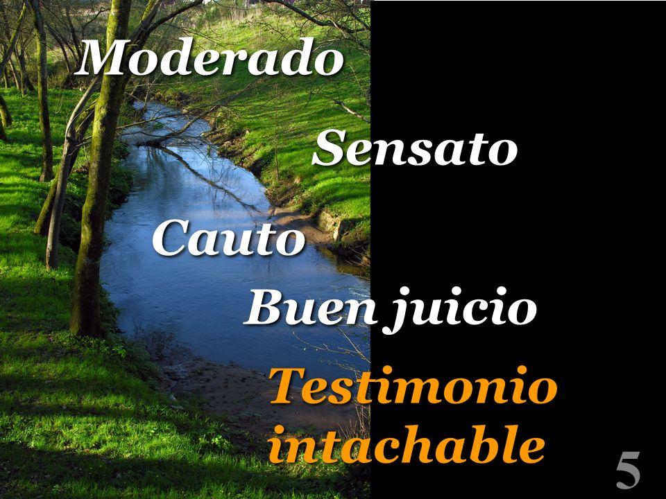 Moderado Sensato Cauto Buen juicio Testimonio intachable 5