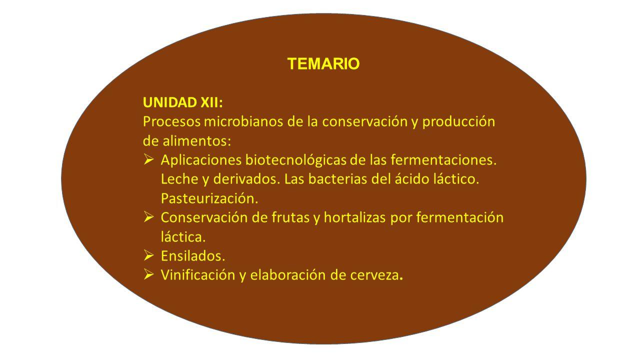 Temario unidad xii procesos microbianos de la for Procesos de produccion de alimentos