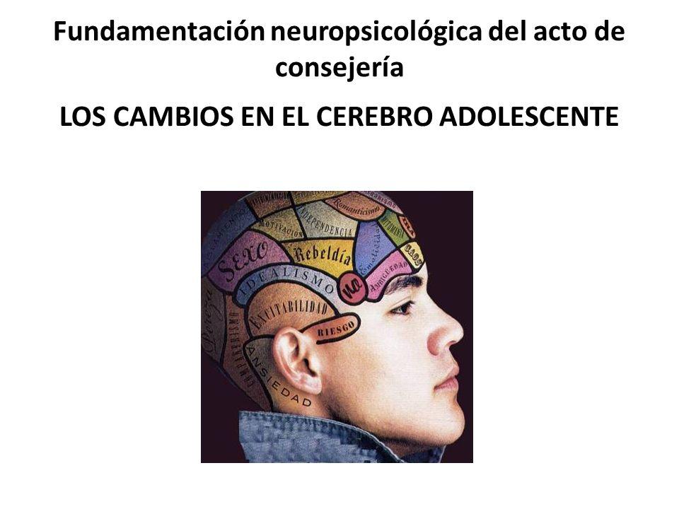 Fundamentación neuropsicológica del acto de consejería